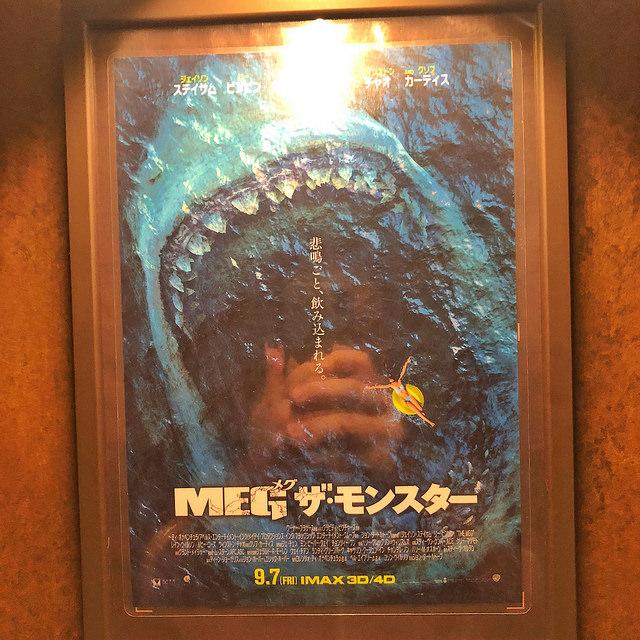 THE MEG ミタ